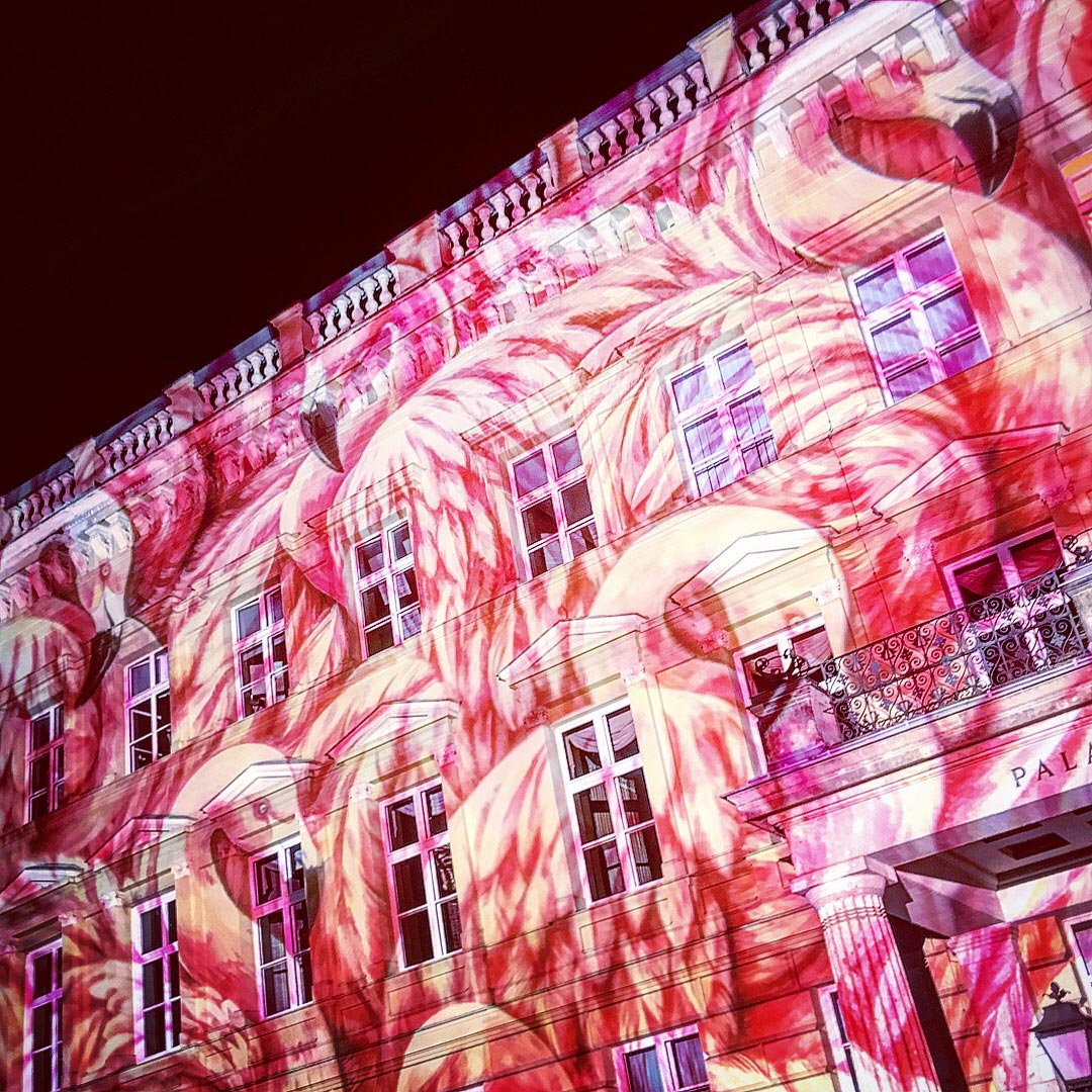 Festival of Lights 2017: Flamingos am Palais am Festungsgraben
